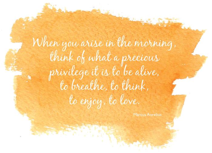 Marcus-Aurelius-quote