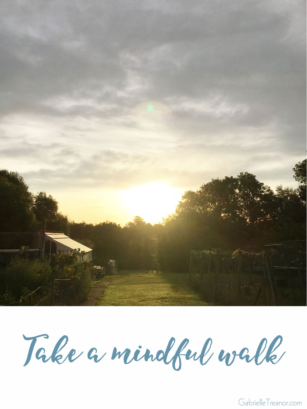 Learn how to use mindfulness to take a mindful walk GabrielleTreanor.com