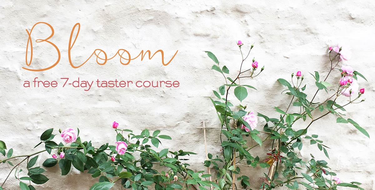 Bloom - a free 7-day taster course