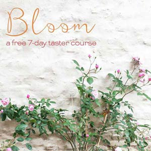Bloom-sq-Mobile