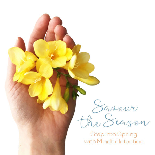 Savour the season spring ebook